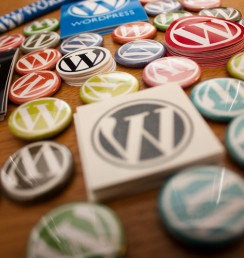 hosted-wordpress-main